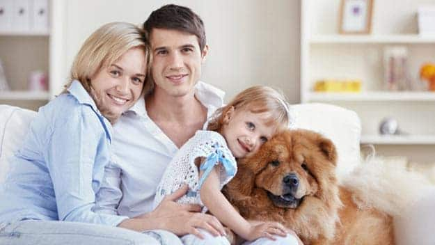 Wills & Trusts dog-young-family Direct Wills West Ham